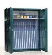 Wapenkluis Lips Occ 1411 - Mustang Safes